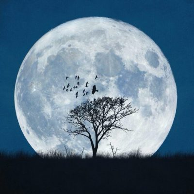 Happy Full Moon!